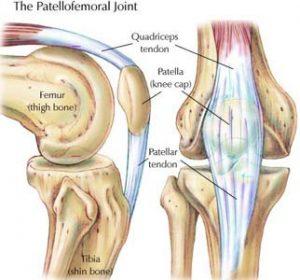 pat-fem-joint
